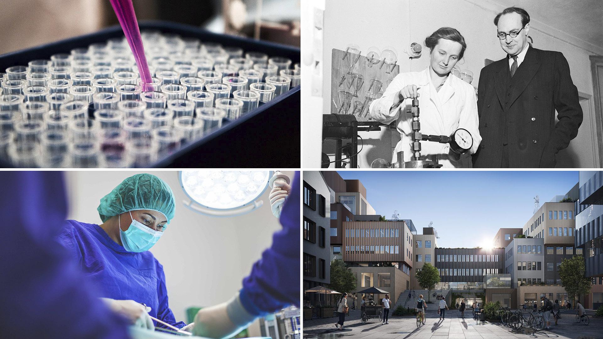 Stina Stenhagen kollage - Life Science